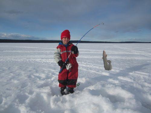 catching Alaskan burbot